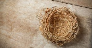 Read more about the article You Have an Empty Nest – Now What?