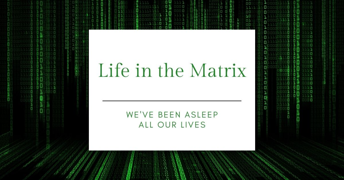 Read more about the article Life in the Matrix
